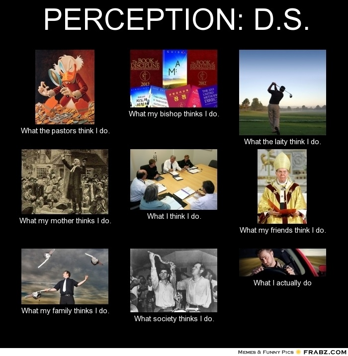 Perception of DS