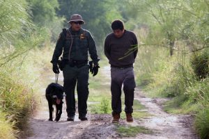 border agent, immigrant ad dog on the road