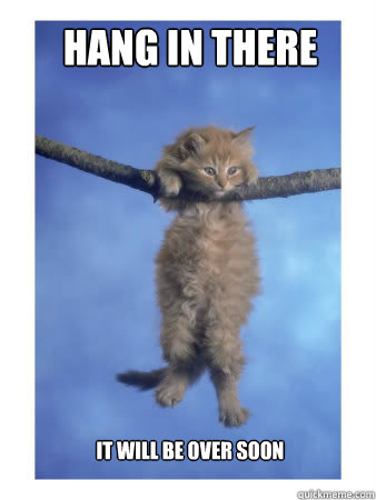 "kitten hanging on a wire saying ""hang in there, it will all be over soon"""