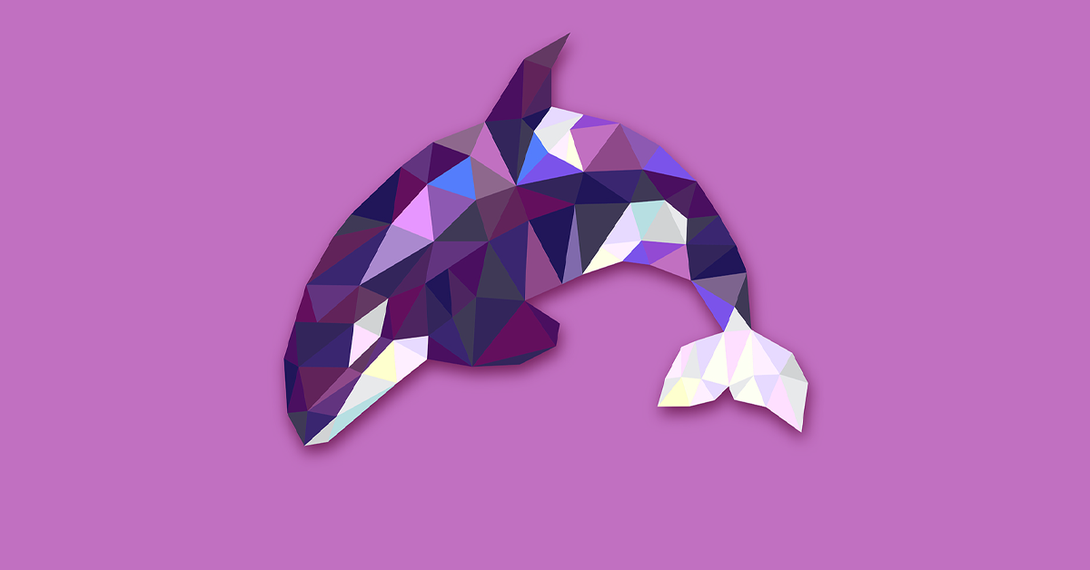 Banner featuring orca with geometric shapes