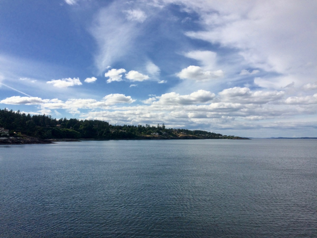 Image of beach in Victoria, B.C. during DHSI 2017