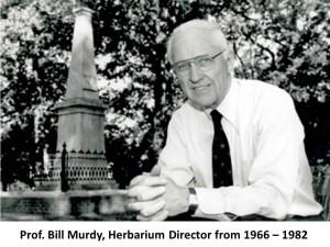 bill murdy