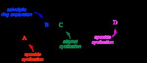 Het 2012 thyrsenol abstract