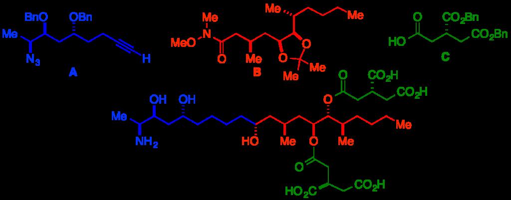 JACS 2009 fumonisin abstract