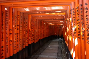 The torii at Fushimi Inari Taisha Credit: Adams 2010