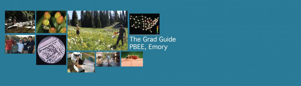 The Grad Guide