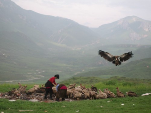 Tibetan Sky Burials | Anthropological Perspectives on Death