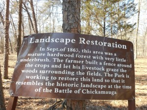 Landscape Restoration