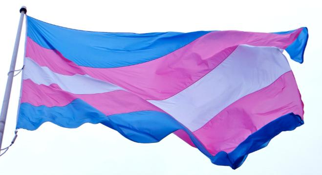 Image of the transgender pride flag being flown.