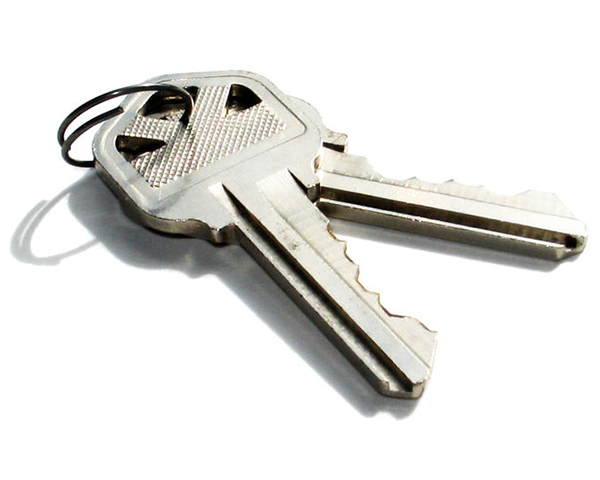 Photo of two keys on a ring