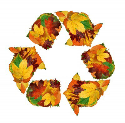 recycle symbol made from leaves
