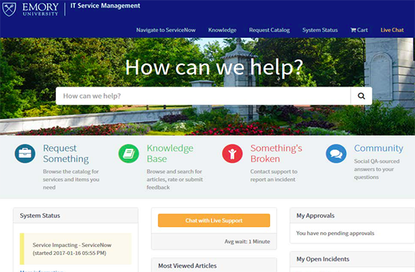 Screen shot of new service home page
