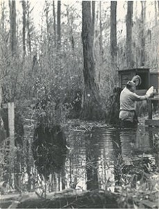 Mosquito collection, Emory University Field Station on Ichuaway Plantation, Baker County, Georgia, ca. 1938-1945. Photograph by United States Public Health Services Office of Malaria Control in War Areas, Melvin H. Goodwin Papers, Manuscript, Archives, and Rare Book Library, Emory University.