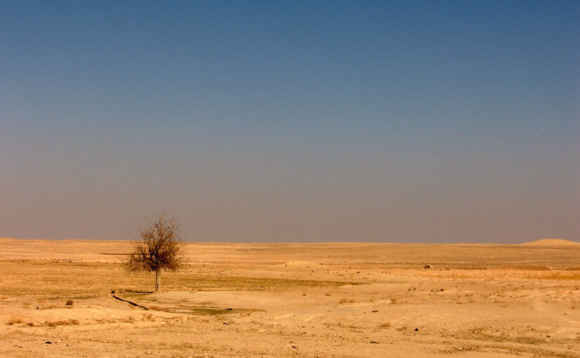 Exploring Perceptions of the Climate Change – Migration – Conflict Nexus in the Context of the Syrian War