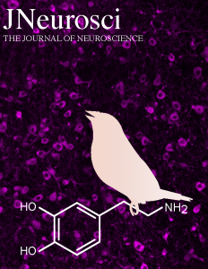 JNS_cover_fig_v5