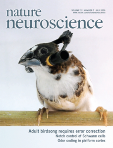nat_neuro_cover