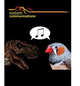 natcomms_cover_image
