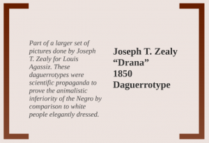 drana-description